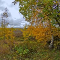 Встречая осень :: Валерий Талашов