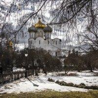 Новодевичий монастырь :: Михаил