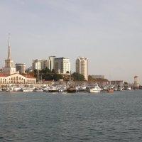 морпорт :: дмитрий панченко