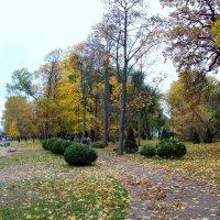 Осень в Петергофе :: alemigun