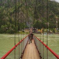Мост через Катунь :: Cerg Do