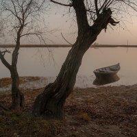 У реки. :: Марина Соколова