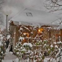 Снежный Ноябрь... :: Ирина Шарапова
