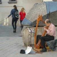 Уличный музыкант. :: Борис Гольдберг