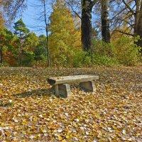 Закружилась листва золотая... :: Galina Dzubina