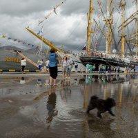 В нашу гавань заходили корабли... :: Алиса Колпакова