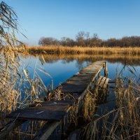 Мокрая Сура :: Artem Zelenyuk