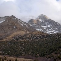 ...Наши горы :: Александр Грищенко