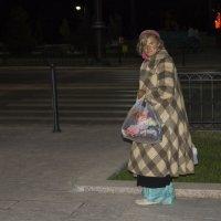 Прогулка в летней ночи :: Лана ***