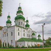 Собор Елецкого монастыря :: Сергей Тарабара