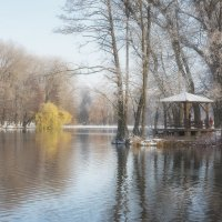 Ранняя зима :: Николай Колонтай