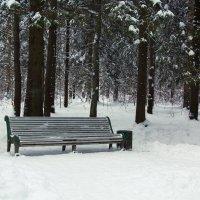 Зимняя скамейка :: Aнна Зарубина