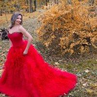 Я королева, просто королева. :: Райская птица Бородина