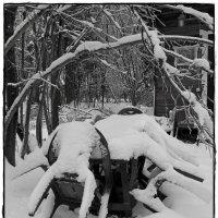 дача зимой :: Natalia Mihailova