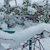 Снежная гирлянда :: Люша