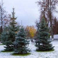 Встреча лета и зимы :: Сергей Беляев