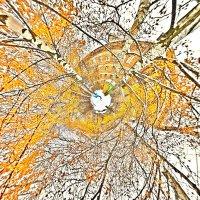 Малые планеты :: Андрей Зайцев