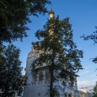Колокольня церкви Рождества Христова :: Сергей Цветков