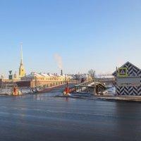 у Кронверкского моста :: Елена