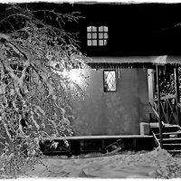 зимний дождь :: Natalia Mihailova