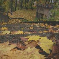 Что такое осень... :: Павел Зюзин