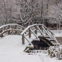 Зима в парке :: Elena Ignatova