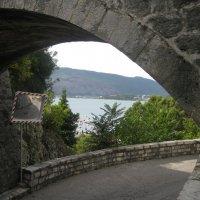 Черногория. Герцег-Нови. :: Лариса (Phinikia) Двойникова
