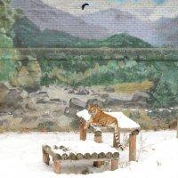 тигр на снегу :: Александра nb911 Ватутина