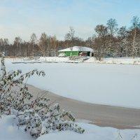Снежный ноябрь :: Виталий