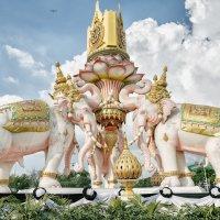 Слоны и стрекоза :: Антон Бегеба