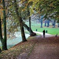 Парк Bois de la Cambre :: Борис Соловьев