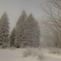 Туда, где на снегоходе только 6 :: Сергей Жуков