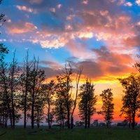 Подмосковный закат :: Svetlana Sukhorukova