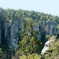 Праховские скалы. Чешский Рай. :: Avgusta