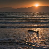 Dead Sea :: Michael & Lydia Militinsky