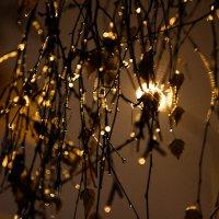 Осень ,ночь ,фонарь :: Николай Фролов