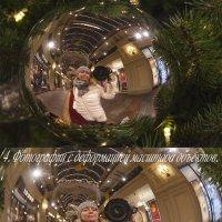 4.Фотография с деформацией масштаба объектов. С Новым годом!!! :: Елена Романова