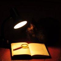 Не прочитанная книга. :: Виталий Виницкий