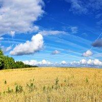 Земля и небо :: Валерий Талашов