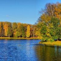 Осень в Кузьминках :: mikhail