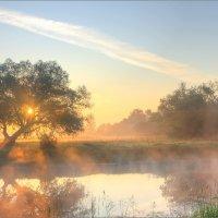 Туман над озером :: Юрий Спасенников