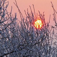 моя всегдашняя любовь- дальневосточные закаты... :: Светлана