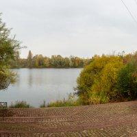 В южном парке, Дюссельдорф, осень, ноябрь, озеро :: Witalij Loewin