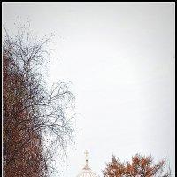 Сквозь золото осени :: Михаил Малец