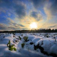 Снежные волны ноября... :: Андрей Войцехов