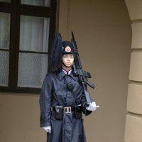 Солдат Королевской гвардии на посту не дремлет :: Александр Рябчиков