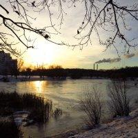 И это еще не зима! :: Андрей Лукьянов