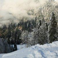 Ноябрь в горах :: Виолетта