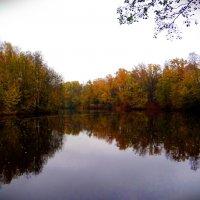 Осенний пейзаж.. :: Антонина Гугаева