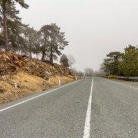 Туман в горах. :: Андрей Самсонов